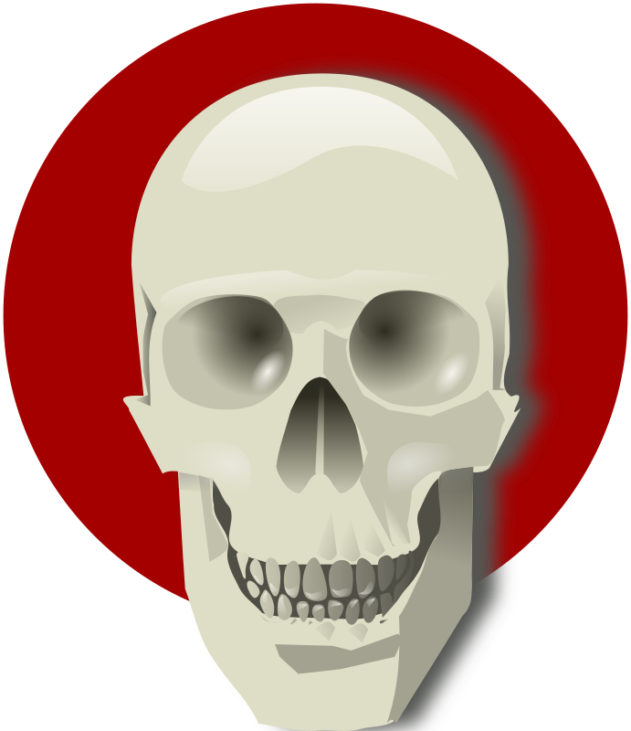 Human skull by rg1024 - A human skull over a red circle.