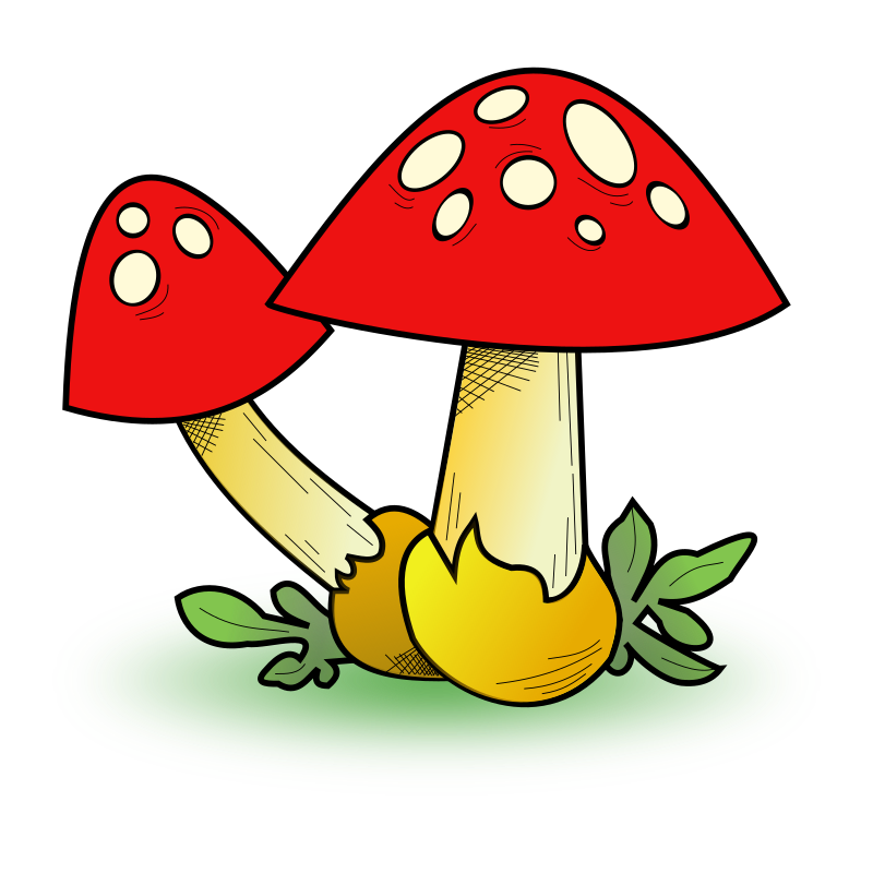 clipart fungal forest rh openclipart org