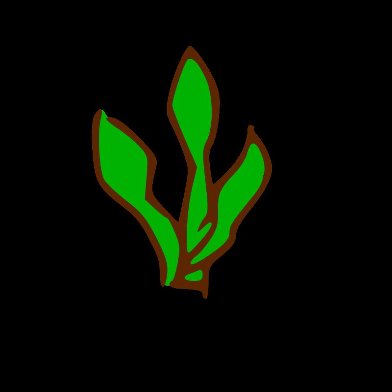 Clipart Kelp Forest