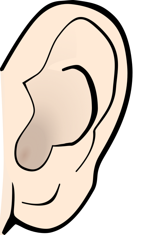 Clipart - ear colored