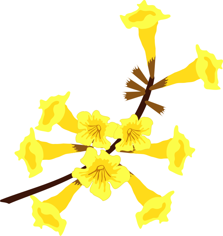 Clipart Picture Of A Flower