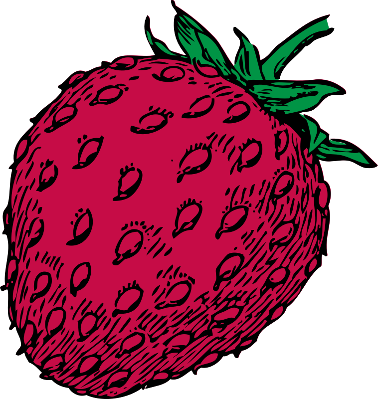 strawberry - color by johnny_automatic - strawberry in color