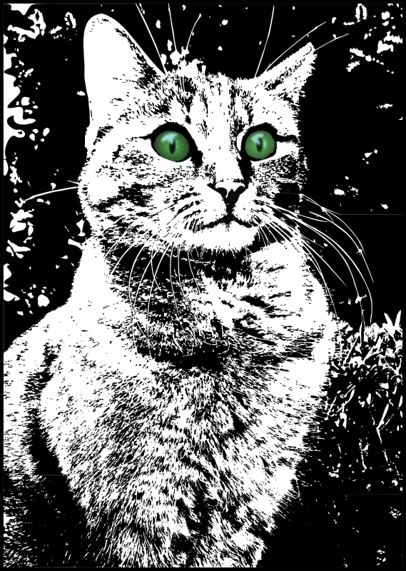 https://openclipart.org/image/800px/svg_to_png/213396/Cat-with-green-eyes.png