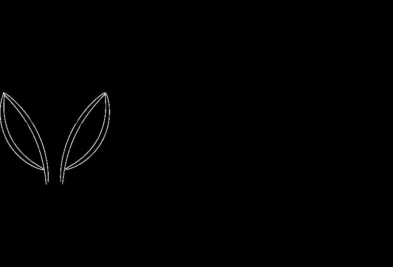 Fox Face Line Drawing : Clipart fox