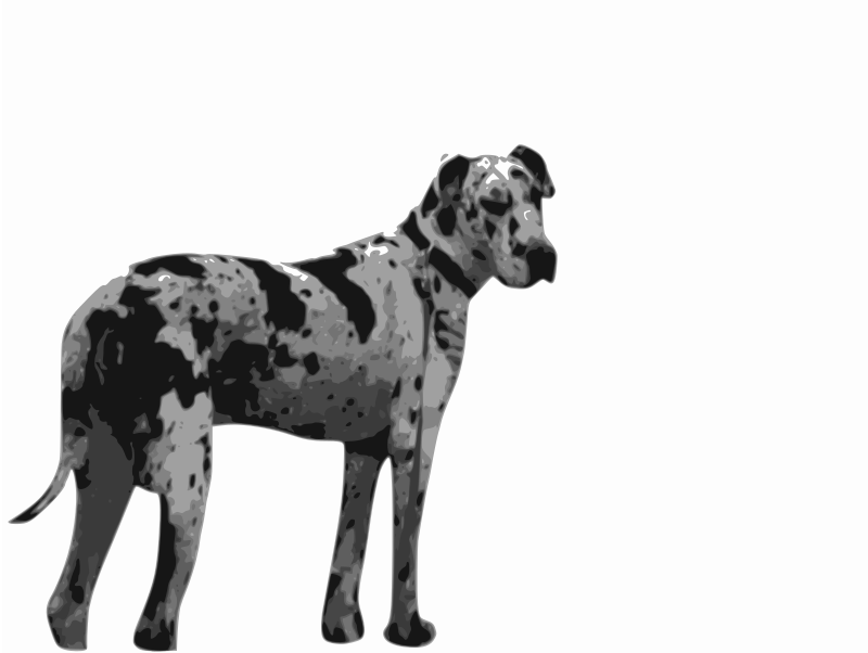 https://openclipart.org/image/800px/svg_to_png/213784/Harlequin-Great-Dane.png