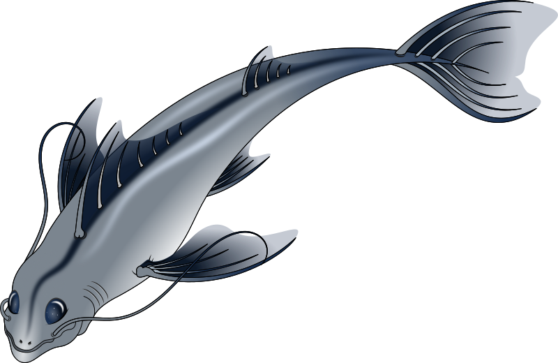 https://openclipart.org/image/800px/svg_to_png/214244/Pescado-Grande---01.png