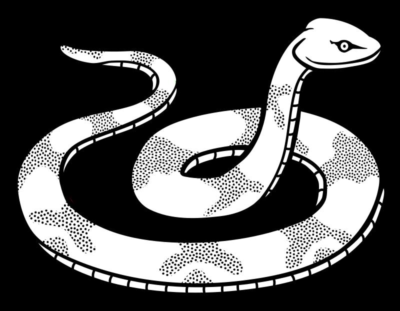 Line Drawing Snake : Clipart snake lineart