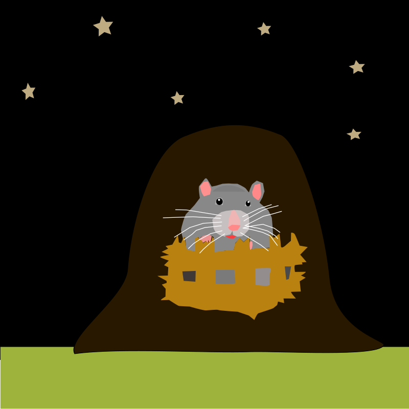https://openclipart.org/image/800px/svg_to_png/214486/mouse-01.png