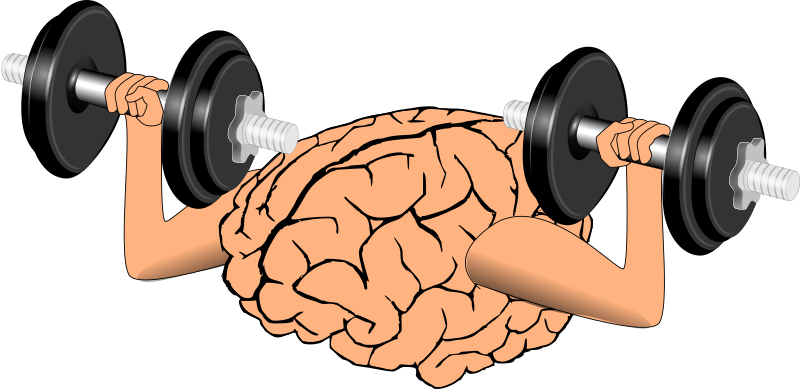 https://openclipart.org/image/800px/svg_to_png/214552/brain-train.png