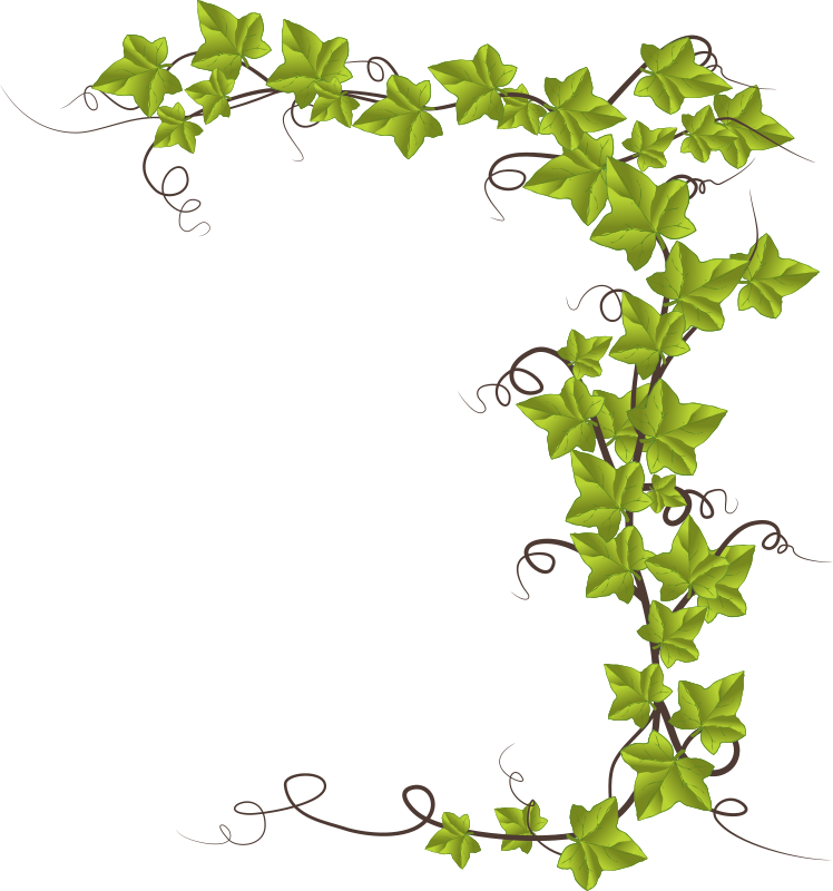 Clipart ivy for Decoration word