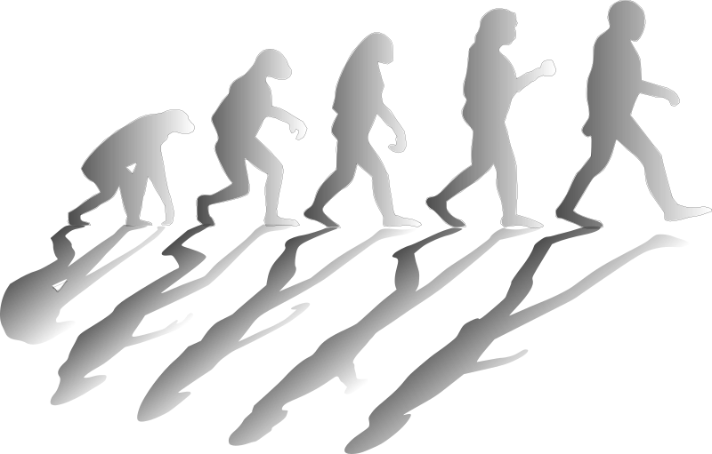 https://openclipart.org/image/800px/svg_to_png/215201/evolving.png