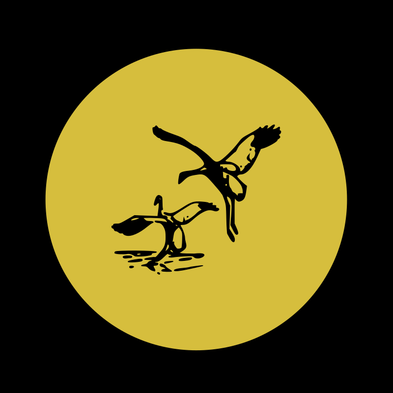 https://openclipart.org/image/800px/svg_to_png/215288/crane-02.png