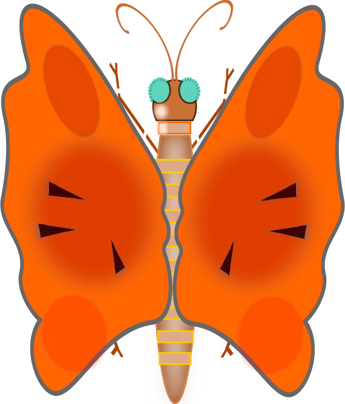 butterfly by zesarvictoria - butterfly-orange