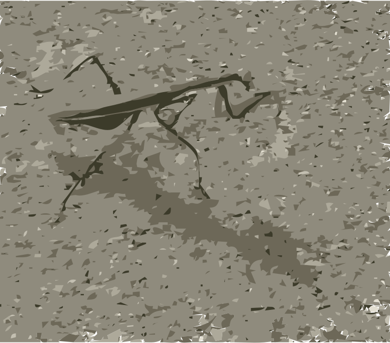 https://openclipart.org/image/800px/svg_to_png/215593/Praying-Mantis.png