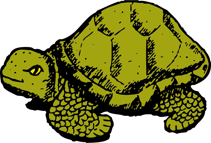 tortoise by johnny_automatic - a tortoise from a U.S. patent drawing