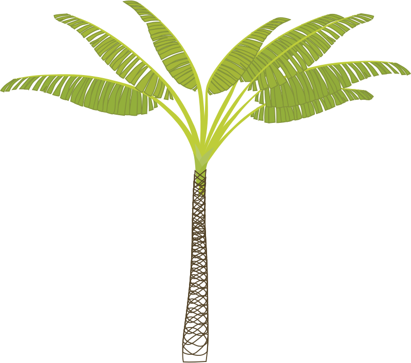palm_tree by gbig95 - illustrator-created small palm tree with separate leaves