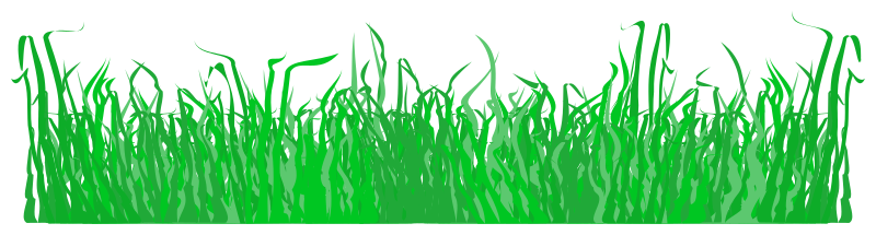 https://openclipart.org/image/800px/svg_to_png/215923/Grass-003.png