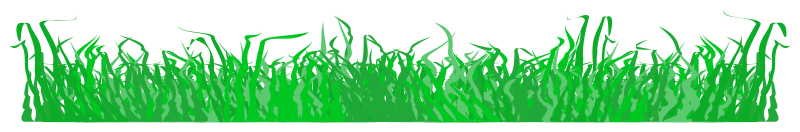 https://openclipart.org/image/800px/svg_to_png/215924/Grass-004.png
