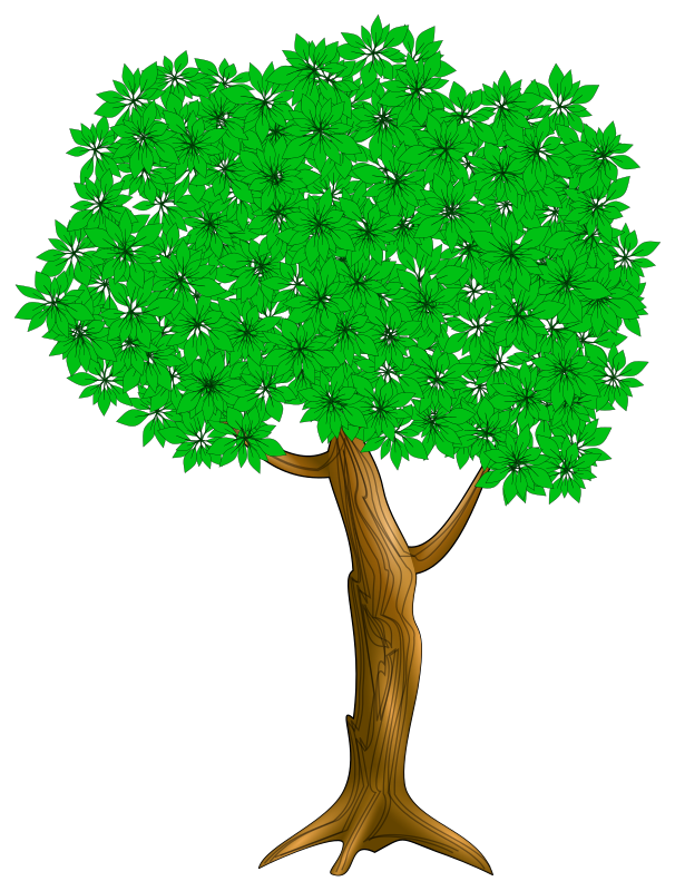 https://openclipart.org/image/800px/svg_to_png/215928/Tree_003.png