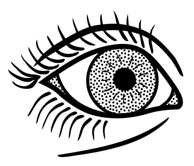 Line Art Eyes : Clipart eye lineart