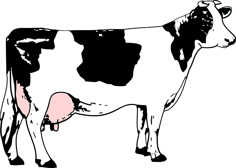 https://openclipart.org/image/800px/svg_to_png/216409/vache-blanche-noir.png