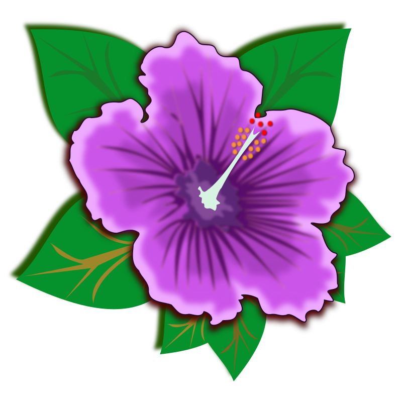 https://openclipart.org/image/800px/svg_to_png/217328/flower_16.png