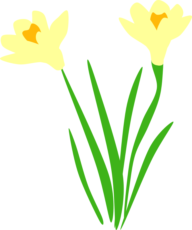 Clipart - Daffodils are up!