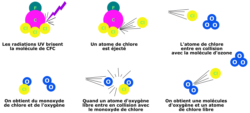 https://openclipart.org/image/800px/svg_to_png/217665/laurenth2-CFCdestruction-ozone-cleaned.png