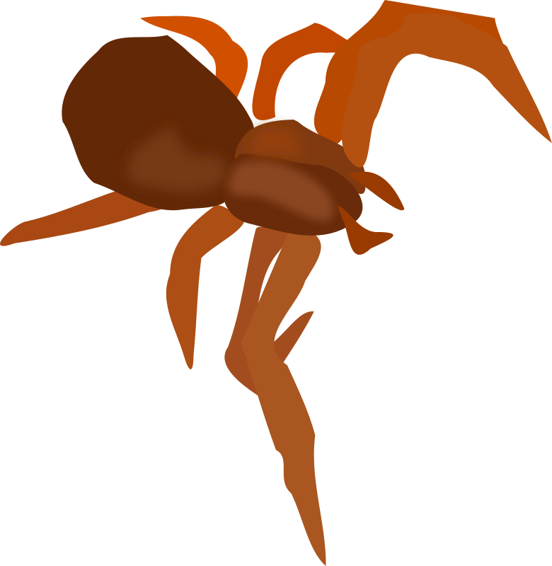 Spider by ericlemerdy - The vectorized version of the flower spider.