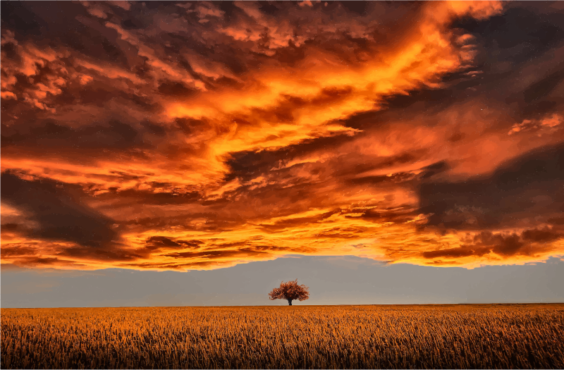 Clipart - Lone Tree Under A Scorched Sky