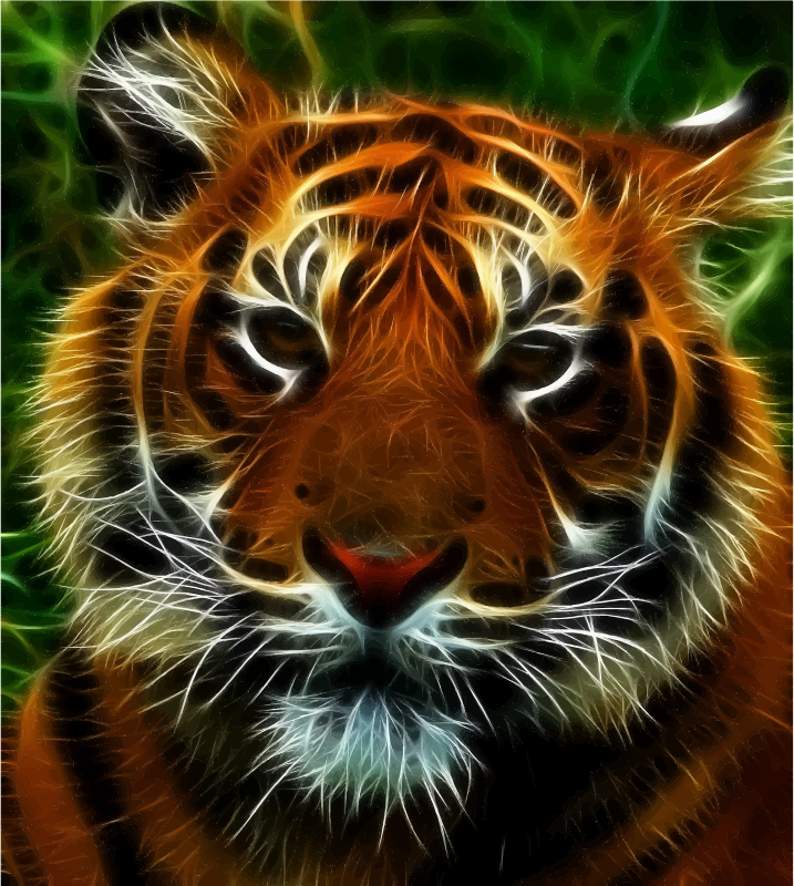 Clipart - Tiger Tiger Burning Bright