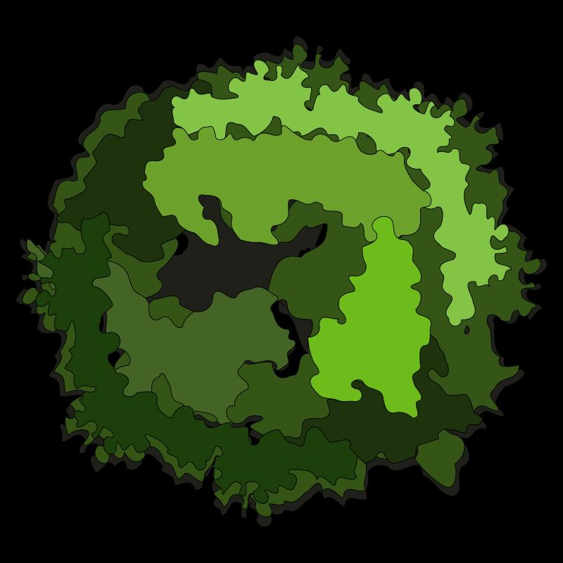Clipart - tree-30