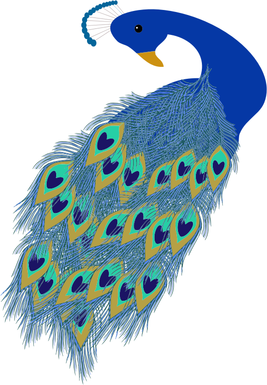Clipart - Peacock Illustration