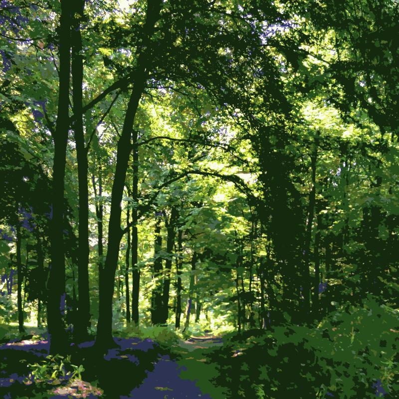 Clipart - Forest shortcut