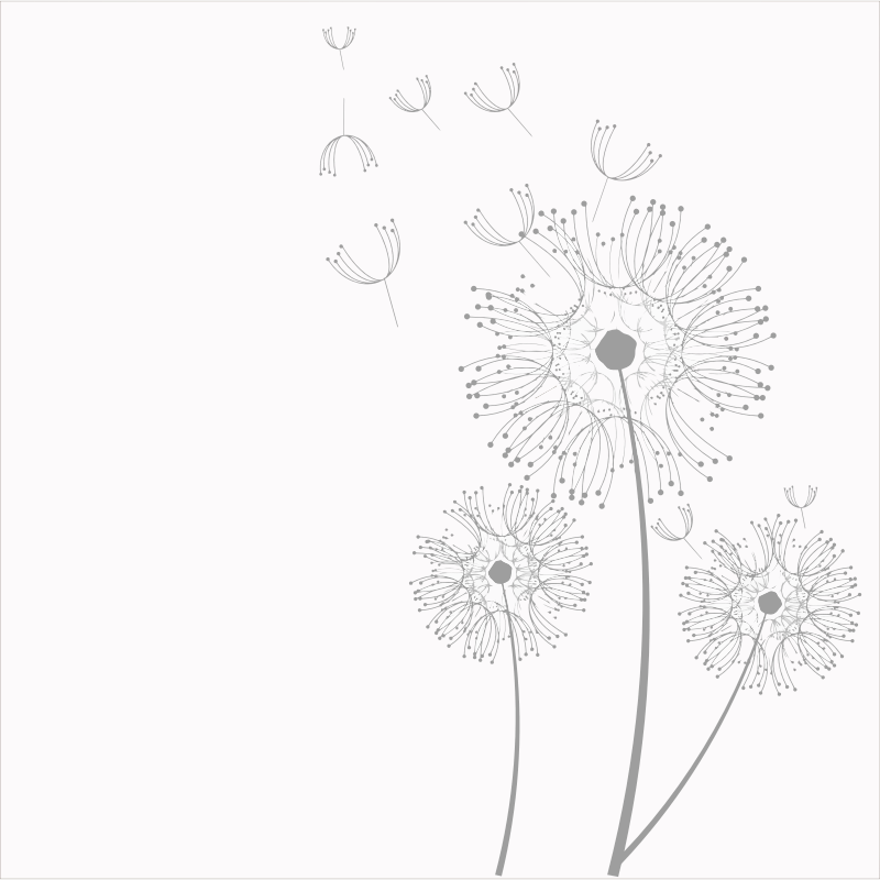 white dandelion clip art