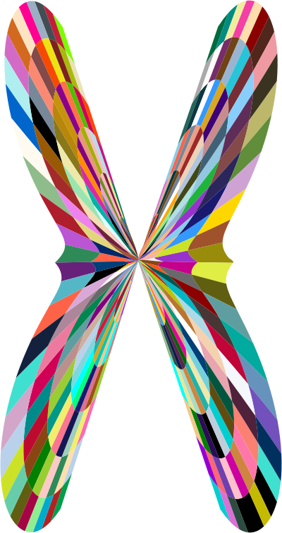 butterfly clipart png