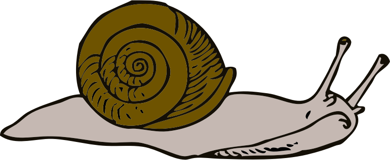 snail by johnny_automatic - Lessons in Zoology by Clarabel Gilman, Common Animal Forms, New England Pub. Co prior to 1911
