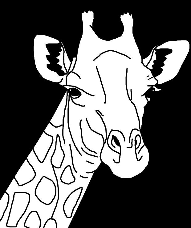 Giraffe drawing outline
