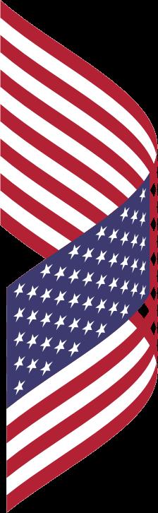 American Flag Eagle Png