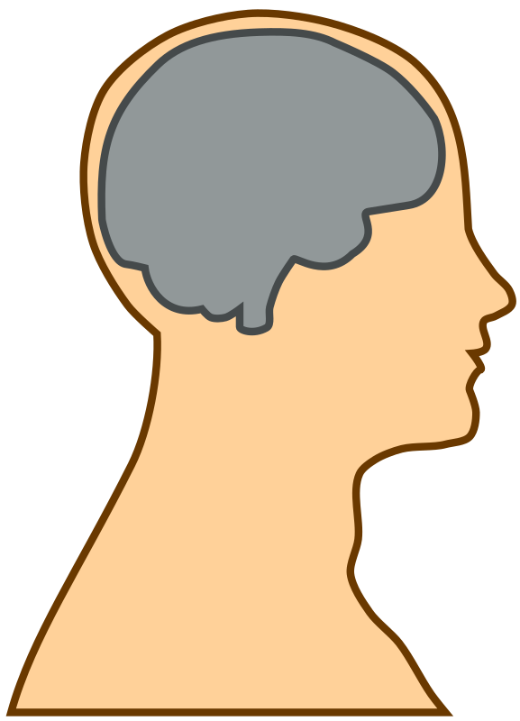 Similiar Head With Brain Clip Art Keywords