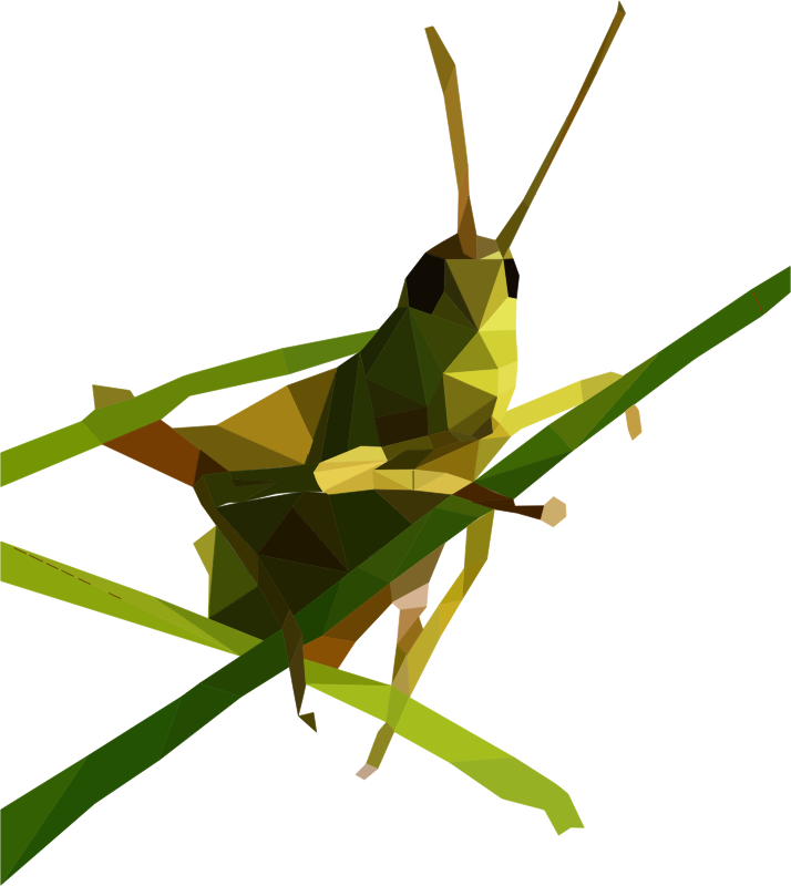 Clipart - Low Poly Grasshopper