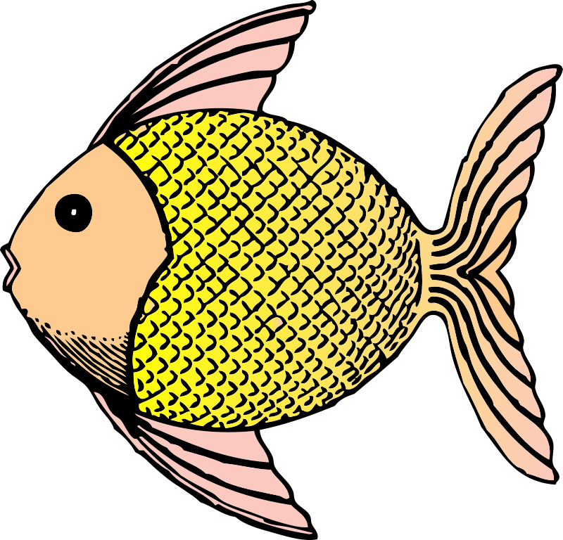 tropical fish by johnny_automatic - a tropical fish from a U.S. patent drawing