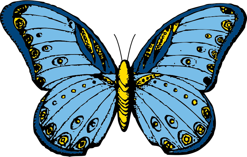 butterfly by johnny_automatic - a butterfly from a U.S. patent drawing