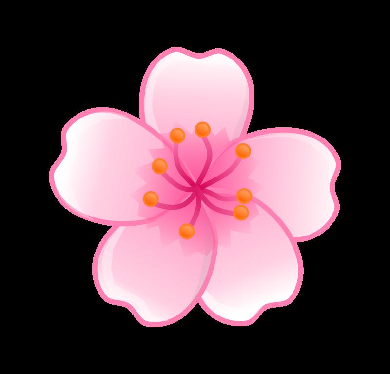 Clipart Sakura Flower