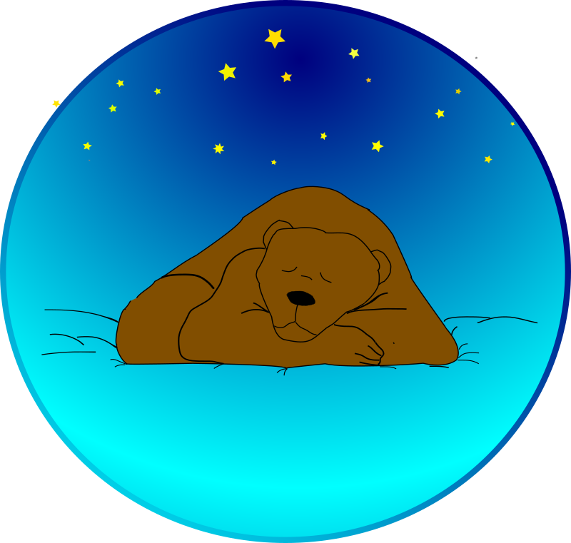 Sleeping bear under the stars by Anonymous