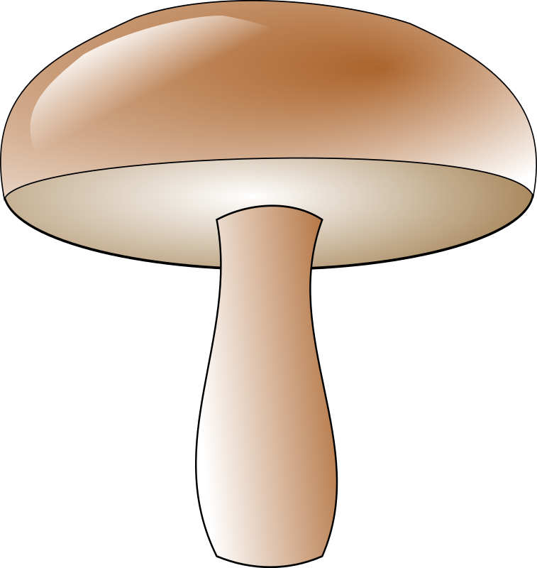 champignon by Anonymous
