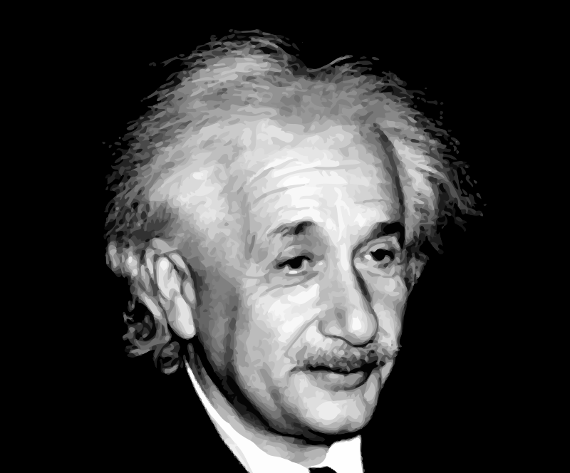 a look at the career of albert einstein According to aboutcom, albert einstein started out working as a technical assistant examiner at the swiss patent office in 1902 after his received his doctorate in 1905 and had several articles.