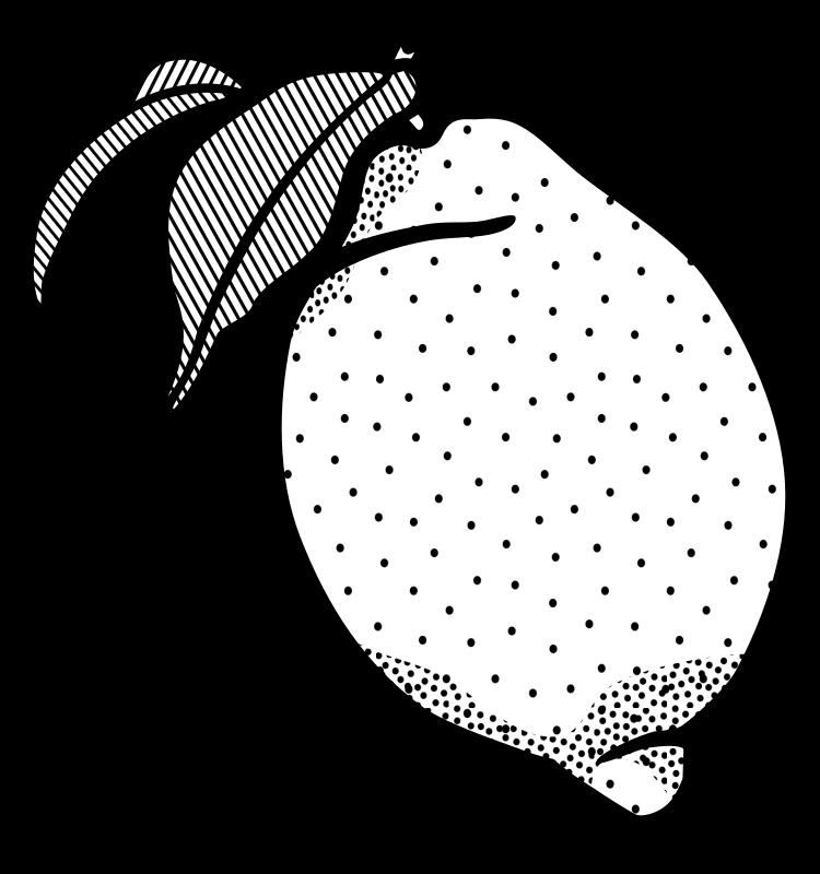 Clipart - lemon -lineart