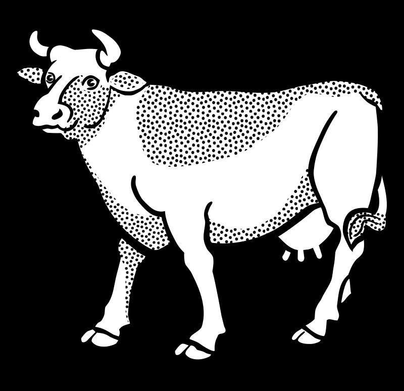 Line Art Cow : Clipart cow lineart