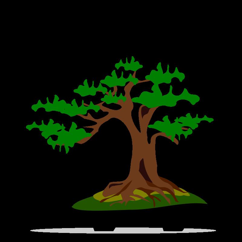 Clipart - bonsai-06 Bonsai Tree Clipart